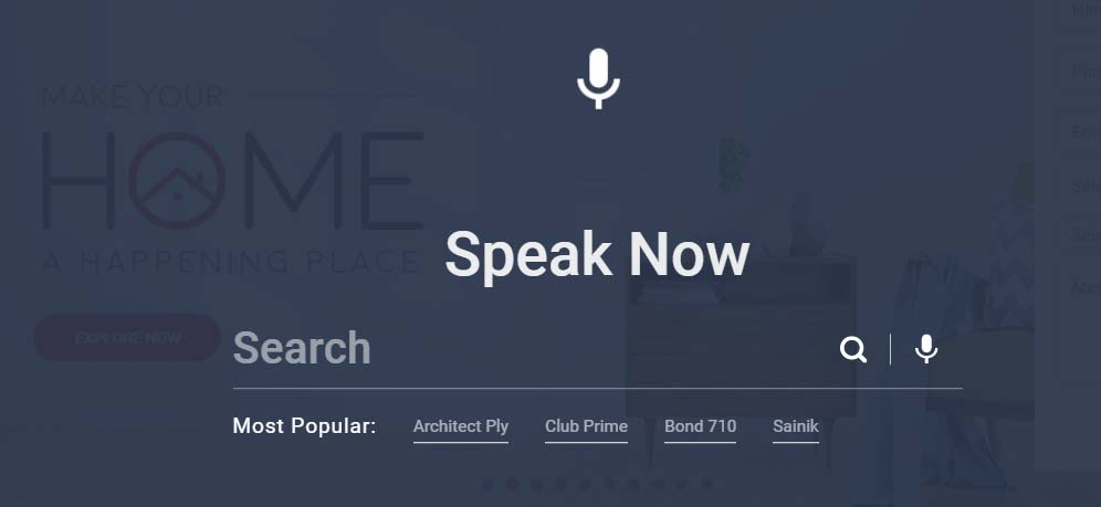 Centuryply Voice search