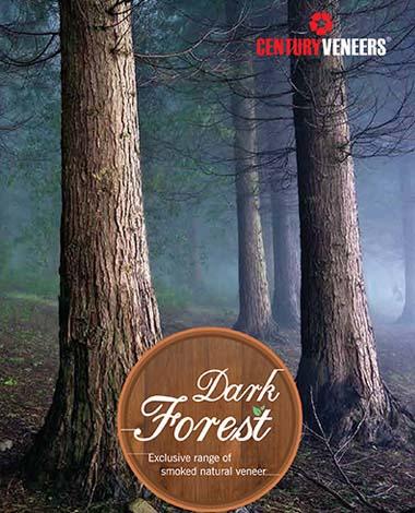 Veneers Darkforest
